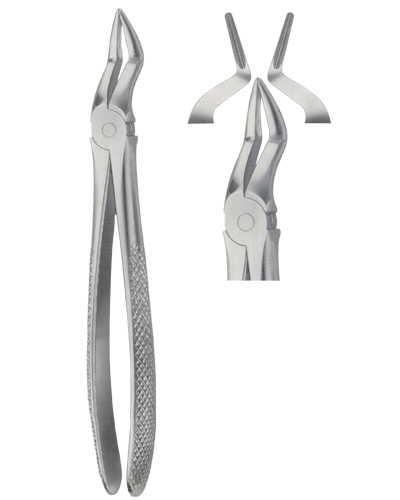 Dental Instruments » Tooth Extracting Forceps | Domo Corporation